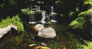 How to resize a Fountain or Pond Pump